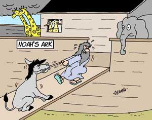 Mules loaded onto Noah's Ark